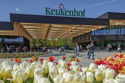 Keukenhof-Gardens-Tulip-Season