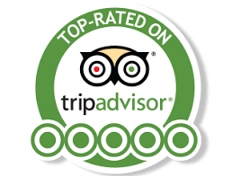 Tripadvisor Holland Private Tour