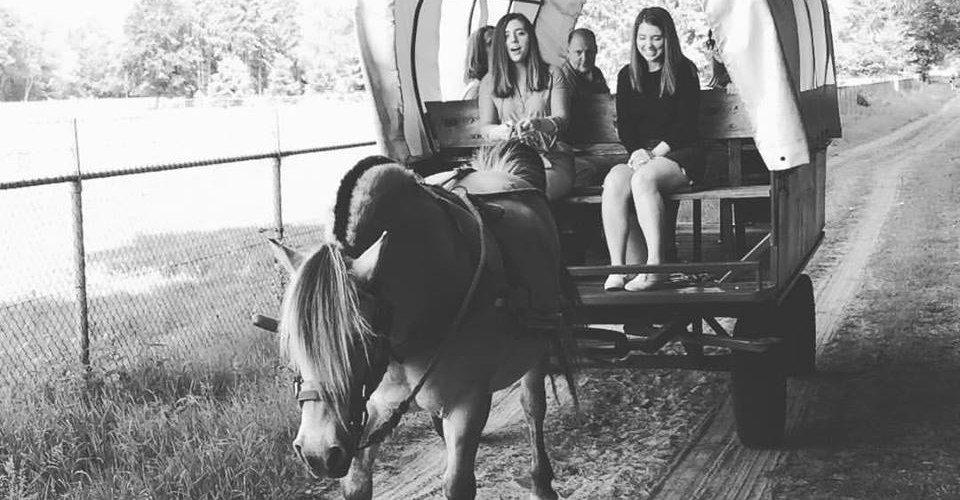 Holland Custom Tour - Horse Ride