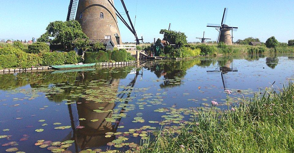 Tour Rotterdam Holland - Kinderdijk windmills