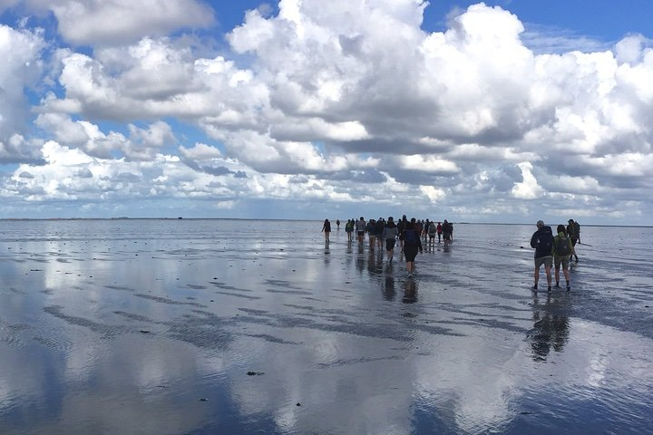 Wadlopen Mudflathike 5 ways to experience the Netherlands