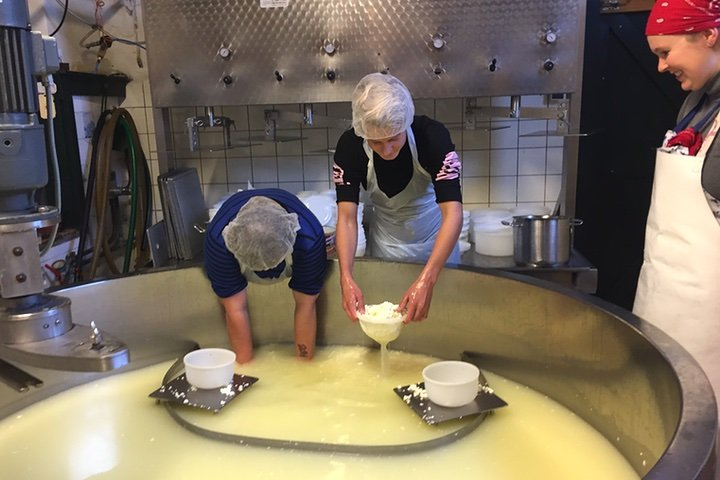 Workshop Cheesemaking - 5 ways to experience the Netherlands