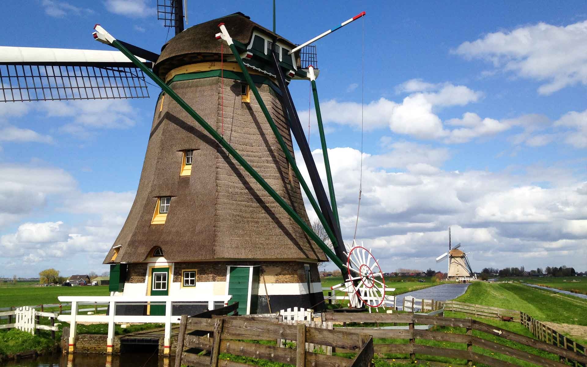 Visit the windmills on a Day Tour from Amsterdam
