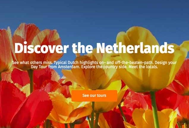 See the tulip fields with a Day Tour from Amsterdam